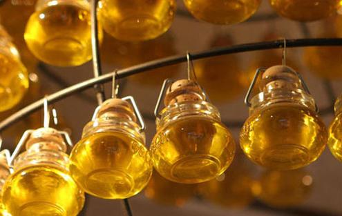 Aceite De Argán: El Oro De Marruecos